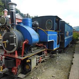 by Sambit Bandyopadhyay - Transportation Trains