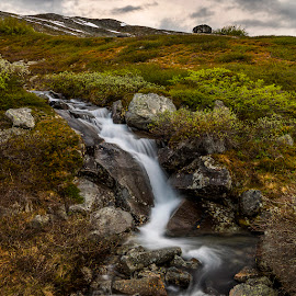The little creek by Peter Samuelsson - Nature Up Close Water