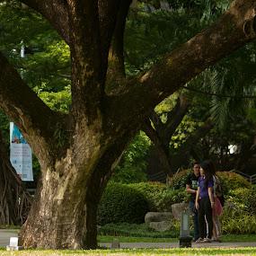 by Reagan Estrella - City,  Street & Park  City Parks ( photowalk, skpw, worldwide, great scott )