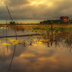 by Donald Jusa - Landscapes Prairies, Meadows & Fields