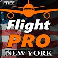 Pro Flight Simulator NY Free