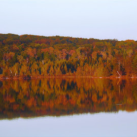Orange Marmalade by Kathy Woods Booth - Landscapes Waterscapes ( michigan, reflection, fall, reflections, autumn colors )