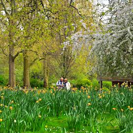 london by Guilherme  Junior - City,  Street & Park  City Parks ( landscapes, city park )