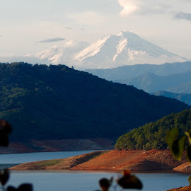 Has to be Shasta by Sherry Gardner - Landscapes Mountains & Hills