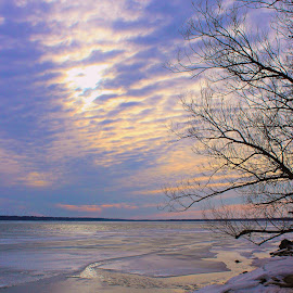 Ice by Carolyn Taylor - Landscapes Weather