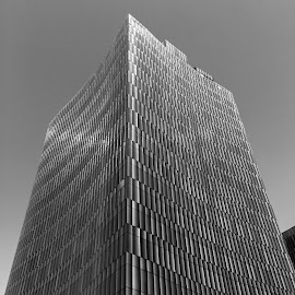 by Waddah Alnajjar - Buildings & Architecture Office Buildings & Hotels
