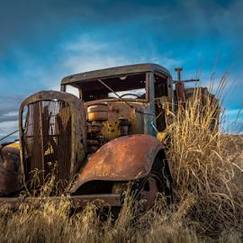 Rusted Retirement by Bob  Juarez - Transportation Other ( agriculture, farm truck, boneyard, fields, abandoned,  )