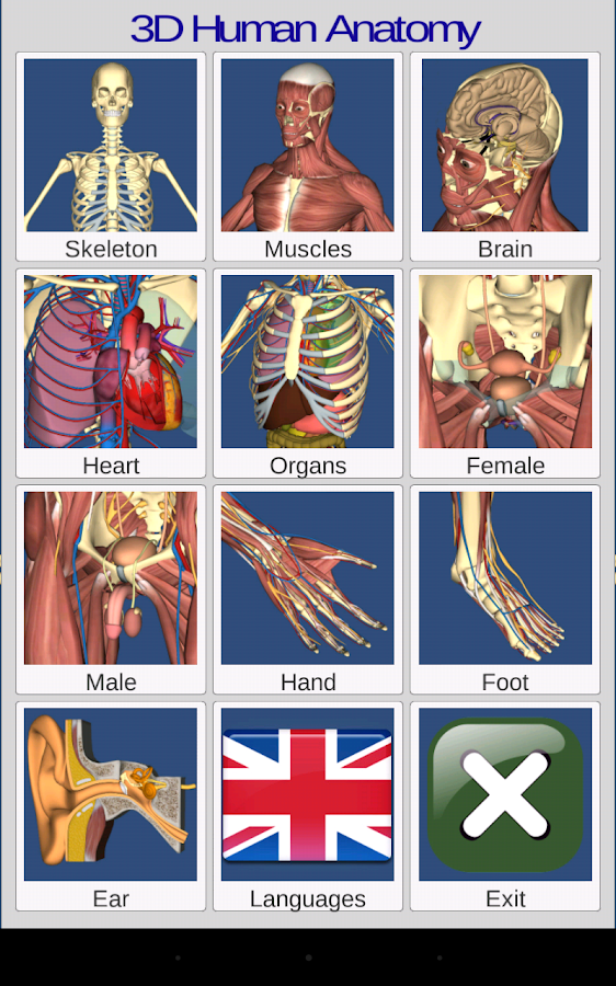 3D Anatomy Screenshot 8