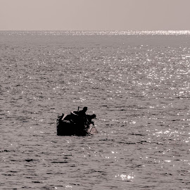 fishing by Jose Maria Vidal Sanz - Sports & Fitness Other Sports ( sea, fishing, boat, fisherman )