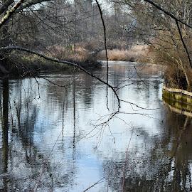 River Bend by Tesla Konold-Hahn - City,  Street & Park  City Parks