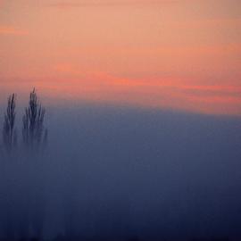 morning fog  by Todd Reynolds - Landscapes Weather