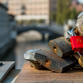 by Mario Horvat - Artistic Objects Still Life ( water, love, sculpture, slovenia, locks, ljubljana, bridge, ljubljanica, river )