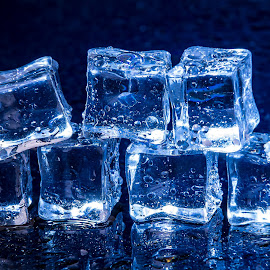 Ice Cubes by Mario Toth - Artistic Objects Still Life ( reflection, refrigerate, frost, clear, macro, cold, clean, fresh, ice, drink, dark, glass, pile, transparent, light, closeup, black, abstract, texture, beautiful, translucent, solid, blue, freeze, background, square, cube, stack, small )