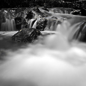 by Noel Angeles - Nature Up Close Water