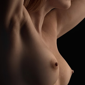 by Jean-marc Nehmé - Nudes & Boudoir Artistic Nude ( torso, female, breasts, laura, shadows )