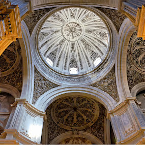Granada Cathedral by Francis Xavier Camilleri - Buildings & Architecture Places of Worship