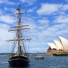 Old VS New by Kamila Romanowska - Instagram & Mobile iPhone ( landmark, ship, australia, piretes, opera, sail, sydney )