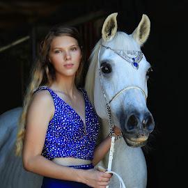 by Diana Cantey - Animals Horses ( straight egyptian arabian horses, zajaddi egyptian arabians, diana cantey photography, azaamah )