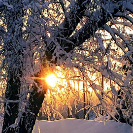 A beautiful sunset after a winter storm. by Heidi George - Landscapes Sunsets & Sunrises (  )