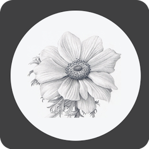 How to Draw Flower