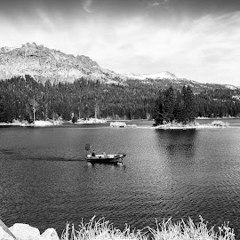 Lake by Carl0s Dennis - Landscapes Travel ( black and white, california, lake, fisherman, usa,  )