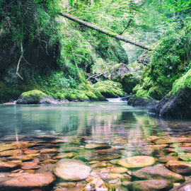 Peaceful place for adventure by Dan Dragos - Landscapes Waterscapes ( wild, adventure, nature, summer, romania, relax, tranquil, relaxing, tranquility )