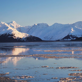 Along Turnagain Arm by Patricia Phillips - Landscapes Travel ( winter turnagain-arm alaska )