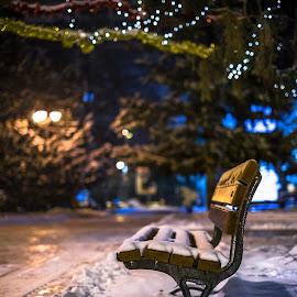frosty night by Cornelius D - City,  Street & Park  City Parks