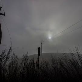 The Fog by Rétyi Előd - Landscapes Travel ( fog, scare, horror, black, misty )
