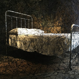 Bedtime Matrix by Michael Lunn - Artistic Objects Furniture