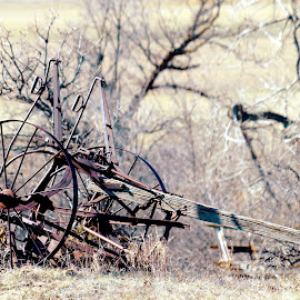 A Rest Well Earned by David Westfall - Transportation Other ( farm equipment, farmng, farm implement, vintage equipment, antique farm implement )
