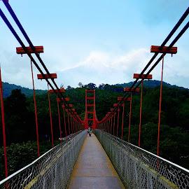by Gigi Thomas - Buildings & Architecture Bridges & Suspended Structures