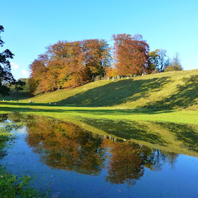 Autumn Colours by Andrea Clayton - Landscapes Waterscapes ( water, trees, reflections, landscape, leaves )