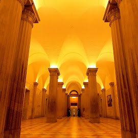 Inside statehouse by Nicole Nicolodi - Buildings & Architecture Other Interior ( art, artist, objects, photography,  )