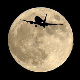 by Moss'b Mili - Transportation Airplanes