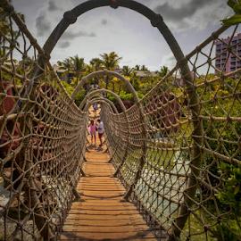 The Rope's Suspended Bridge by Joseph Law - Buildings & Architecture Bridges & Suspended Structures ( wooden, bushes, trees, tourism, bridge, ropes, atlantic, suspended )