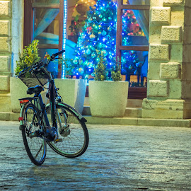 An abandoned bike by Krsto Vulović - Transportation Bicycles ( lights, street, christmas, night, christmas tree, city, bicycle )
