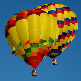 Pair Flight by Dee Haun - Transportation Other ( two balloons, two, red, blue, green, yellow, transportation, hot air balloons,  )