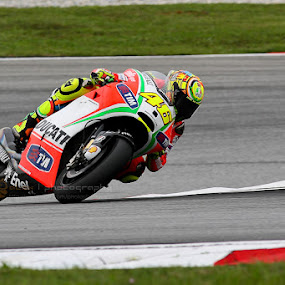 MotoGP by Alex Yue - Sports & Fitness Motorsports ( motogp, bike, valentino, 46, track, ducati, circuit, rossi )