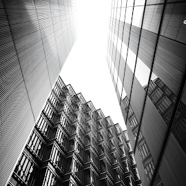 Light from above by Toni Mares - Buildings & Architecture Other Exteriors ( building, architectural shot, london, black and white, architectural detail, architecture, looking up )