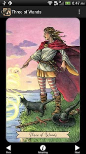 Everyday Witch Tarot for pc