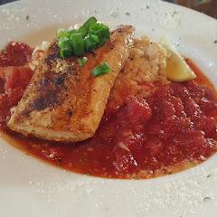 gluten free Grilled Mahi Mahi over rissoto and marinara sauce, dusted with parmesan