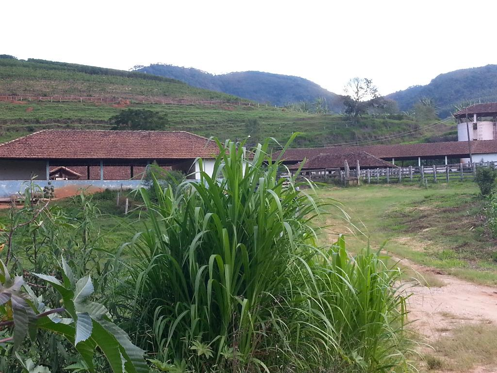 Fazenda à venda, Zona Rural, Carmo de Minas.