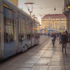 by Jasminka  Tomasevic - City,  Street & Park  Street Scenes