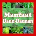 App Manfaat Daun-Daunan APK for Kindle