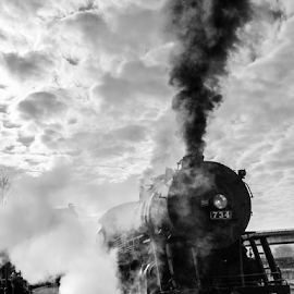 All Aboard! by Myra Brizendine Wilson - Transportation Trains ( train to frostburg, black and white, black and white photo, western maryland train, cumberland md, train trip to frostburg, md, train in frostburg, trip to maryland, maryland, train, trip, western maryland, train in maryland,  )
