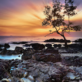Hopless Place by Echi Amenk Fariza - Landscapes Travel