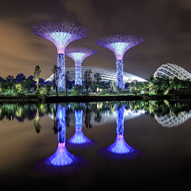 Supertrees by Geracleo Bunggo - Buildings & Architecture Architectural Detail