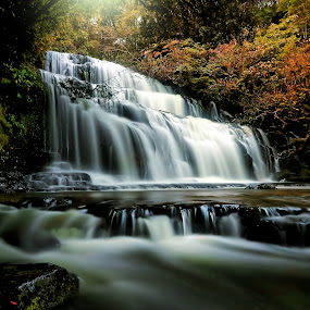 The Dark Falls by Jomy Jose - Landscapes Waterscapes ( hannahsdreamz, purakaunui falls, jomy jose, new zealand, catlins )