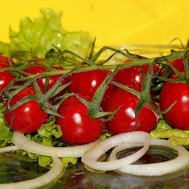 Tomatoes salad by Renata Ivanovic - Food & Drink Fruits & Vegetables ( salad, onions, vegetables, tomatoes, close up )